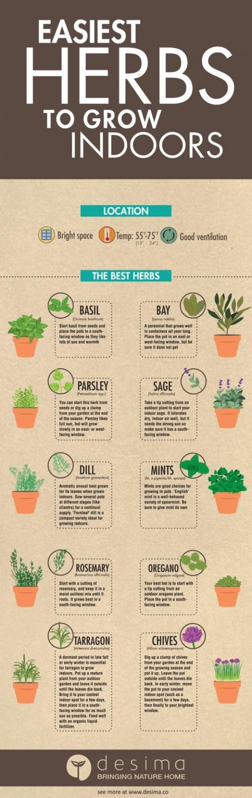 Diy-Herb-Garden