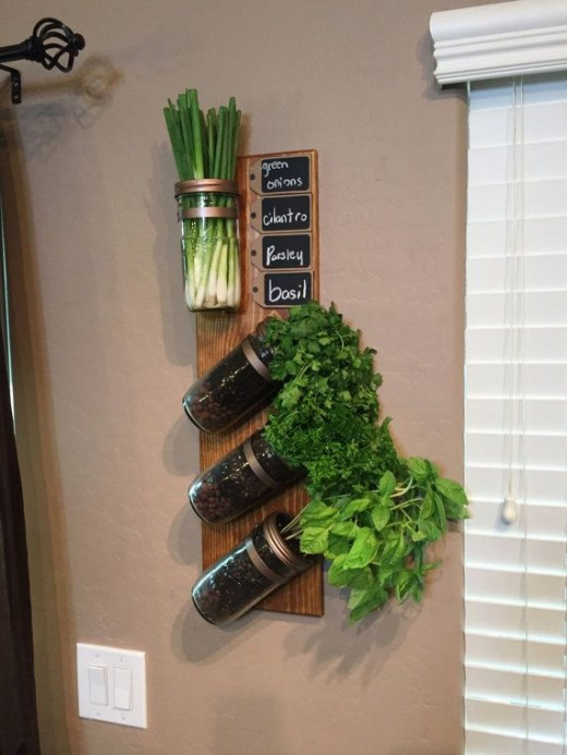 14 diy herb garden ideas for vertical indoor gardening Indoor living wall herb garden