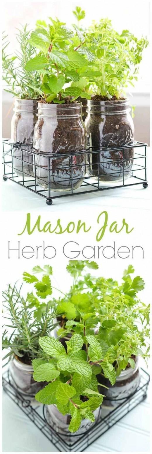 Diy Herb Garden Yo