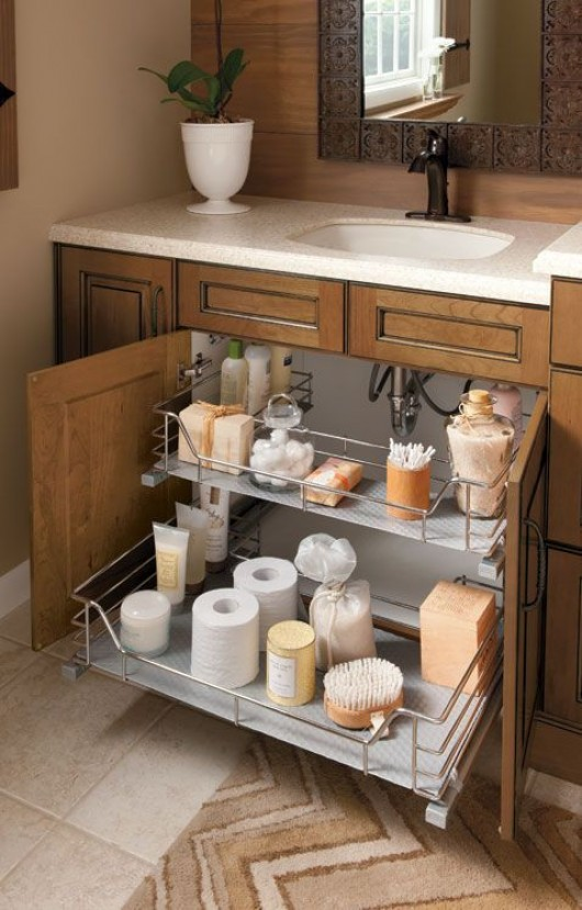 Diy clever storage ideas 15 bathroom organization and creative storage ideas for Under counter bathroom storage ideas