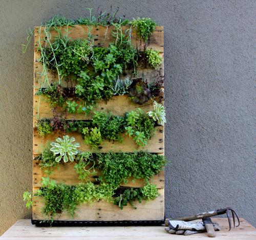 Pallet Vertical garden idea