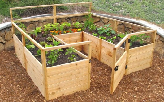 Merveilleux A Simple Raised Bed Vegetable Garden