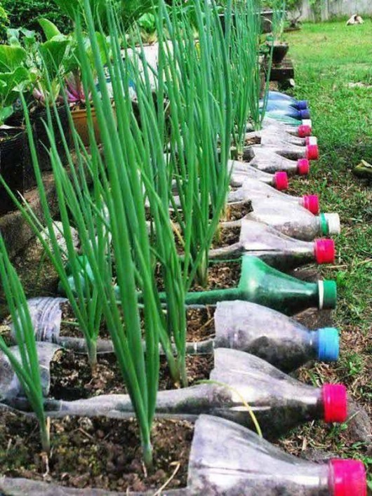 Recycled-garden-ideas