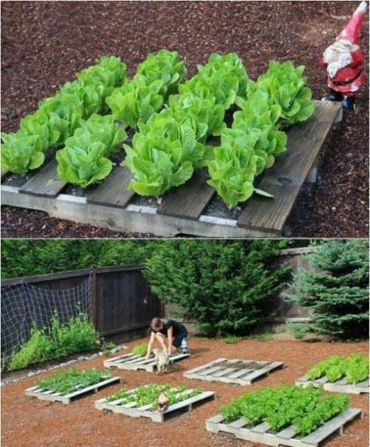 Diy garden ideas 37 recycled stuff gardening and garden for Food garden ideas
