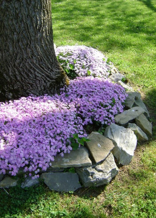 Diy garden 12 rock garden ideas for an exclusive view for Landscaping rocks under trees