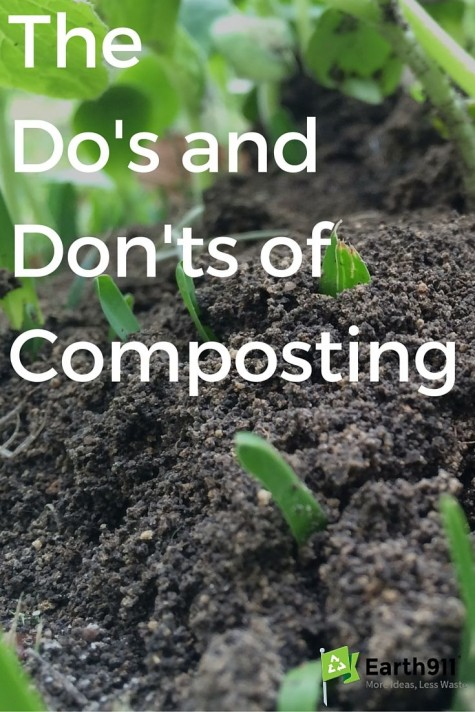 DIY Garden ideas 22 Beginners Garden Worms and Compost ideas on
