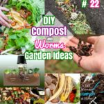 DIY Garden ideas #22: Beginners Garden Worms and Compost ideas on a Budget