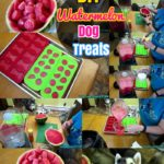 DIY Dog treats : How to Make Frozen Watermelon Dog treats