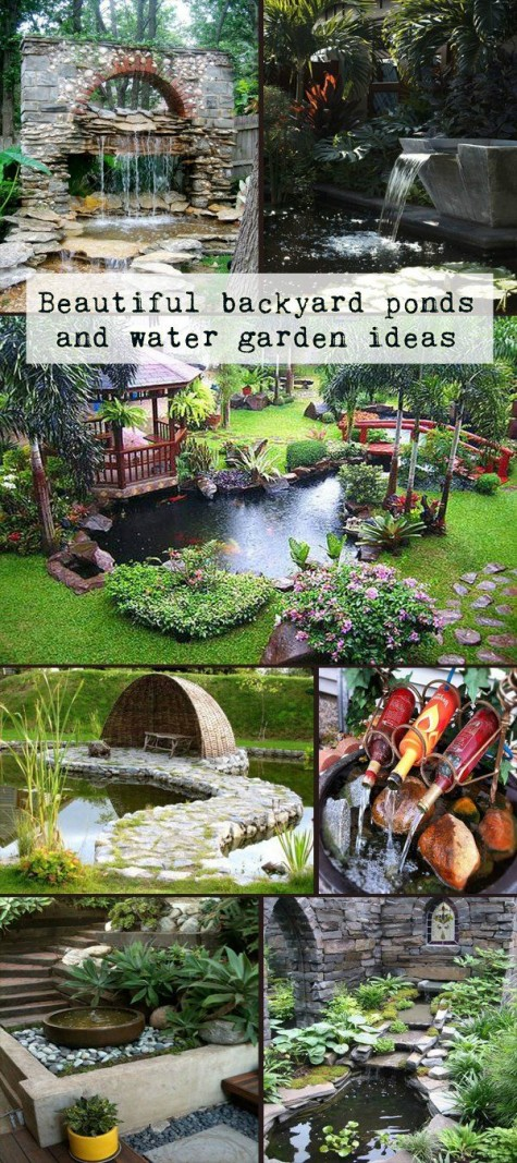 Diy water garden ideas 54 pond garden ideas and design for Backyard food garden ideas