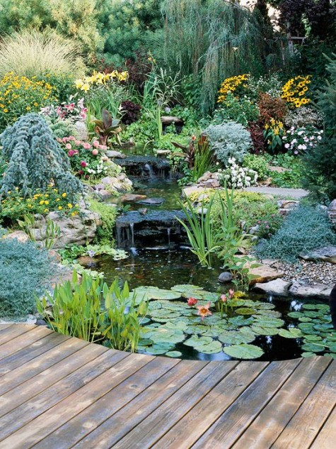 #60 DIY Water Garden Ideas: Container and Pond Water Garden on Small Pond Landscaping Ideas id=70288