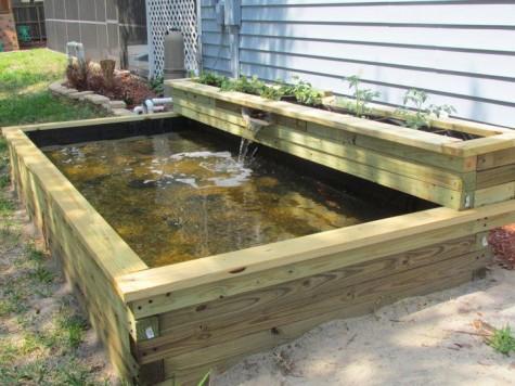 #60 DIY Water Garden Ideas: Container and Pond Water Garden on Raised Garden Ponds Ideas id=13994