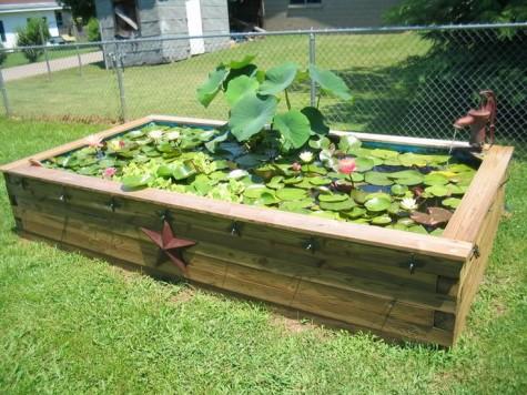 Raised Pond Garden Ideas