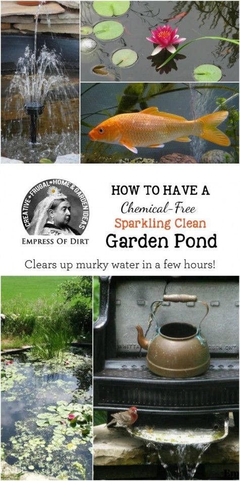Water-Garden-Pond-Filter