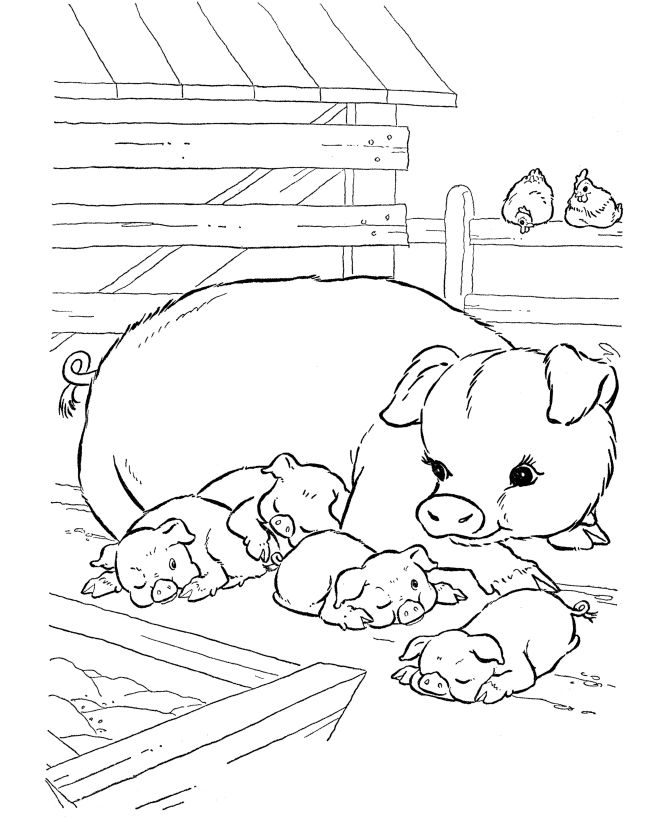farm coloring pages kids - photo#42