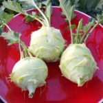 Growing Kohlrabi: Small Changes for Better Yield