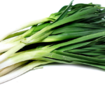 Growing Leeks: Step by Step Ideas