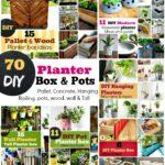 #70 DIY Planter Box Ideas: Modern concrete, Hanging, Pot & Wall Planters
