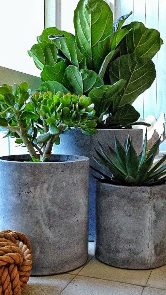 diy-modern-and-concrete-planters-2