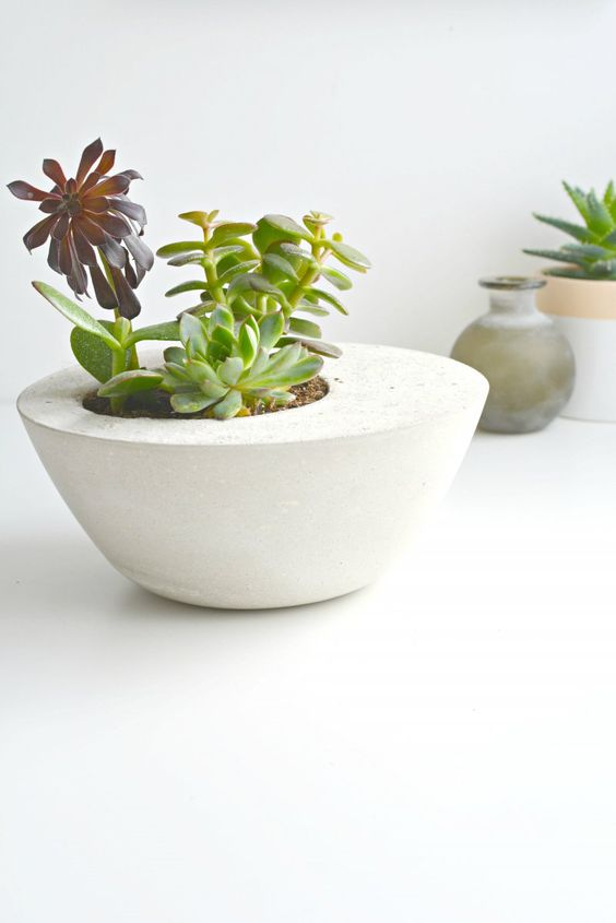 diy-modern-and-concrete-planters-5