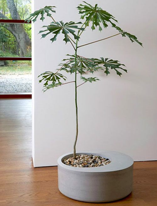 diy-modern-and-concrete-planters-8