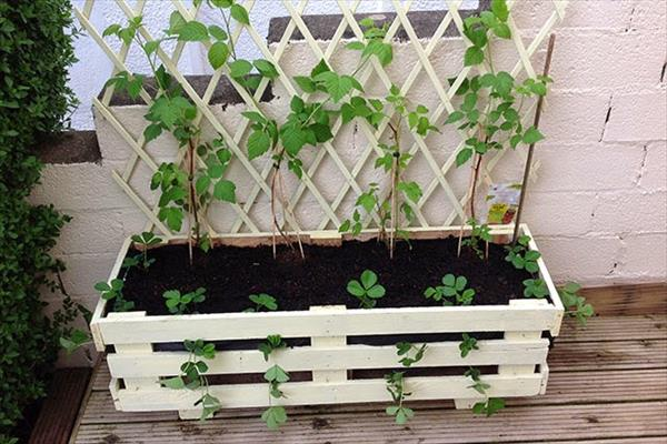 diy-pallet-planter-box-2