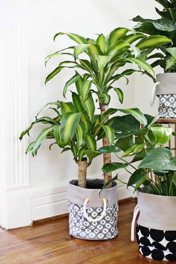 diy-pot-planters-pot-plants-10
