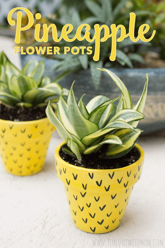 diy-pot-planters-pot-plants-3