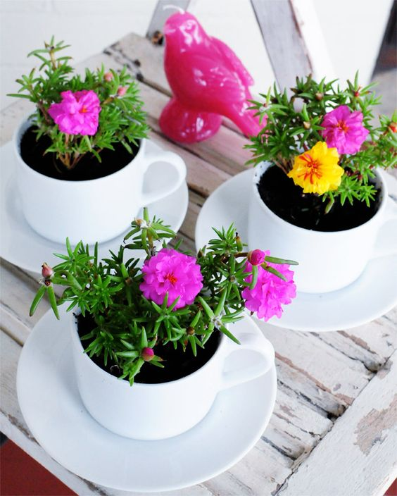 diy-pot-planters-pot-plants-8
