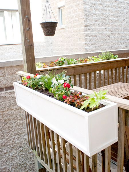 flower railing containers with 6 on Clever Plant Container Ideas further Planters Pots Containers Amazing Modern Planter Pots moreover Mandevilla Container Flowers further What Size Window Boxes To Use likewise 7.