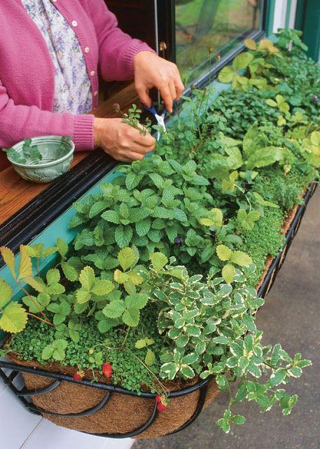 diy-railing-planter-3