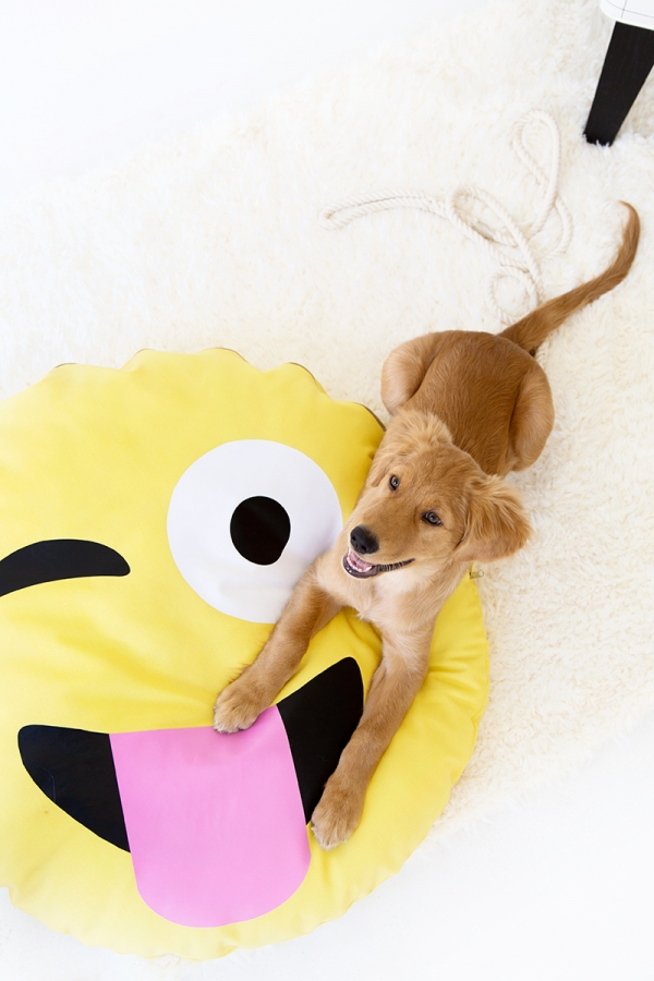 DIY Emoji Pillows for Dogs