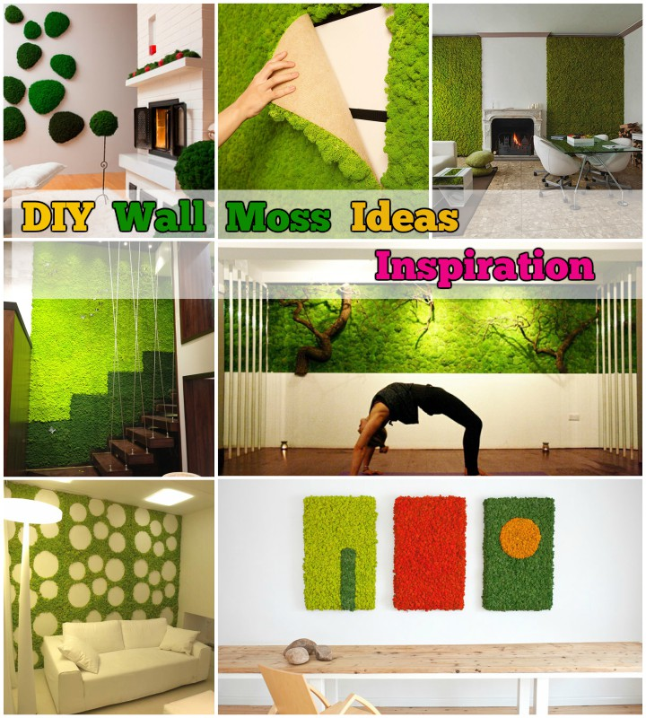 diy-wall-moss-ideas-and-inspiration
