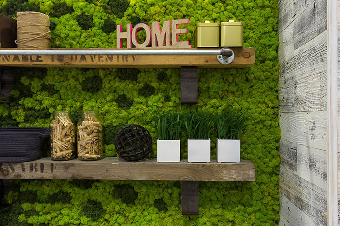 moss-wall-background-for-shelves