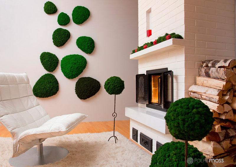 natural-dried-moss-wall-moss-3