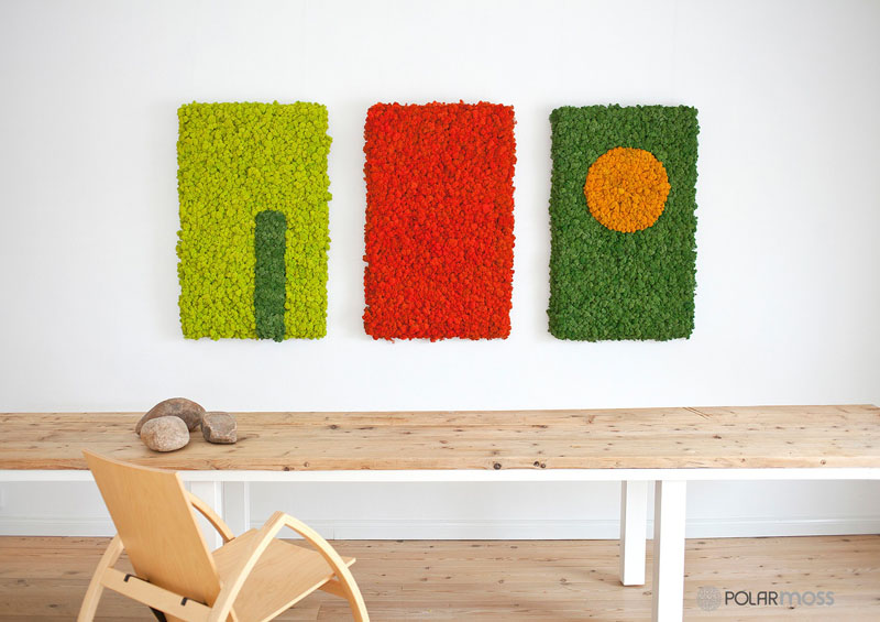 natural-dried-moss-wall-moss-4