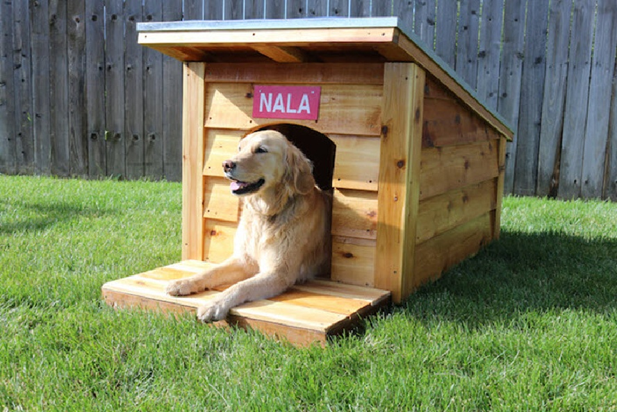 DIY Dog House Ideas Build Plan